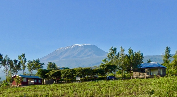 Mt Kilimanjaro_3_from small town of Kitenden in northern Tanzaniaphoto by Bill Snaddon